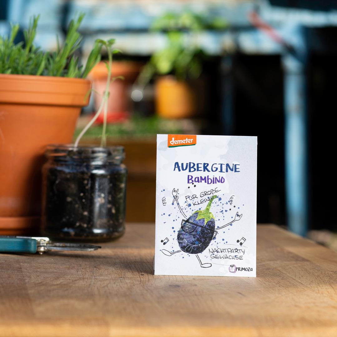 Auberginen Saatgut Sorte Bambino guter Geschmack