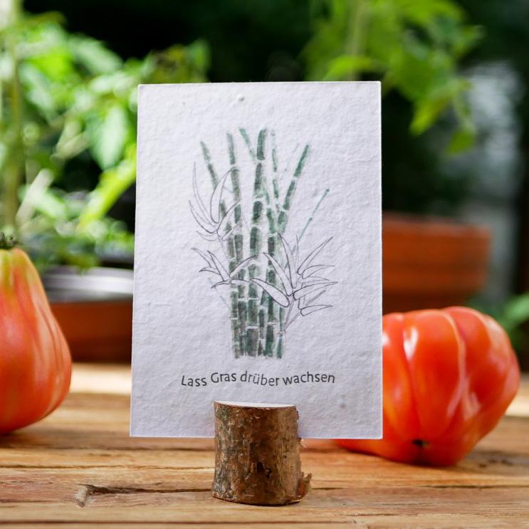 Einpflanzbare Postkarte aus Samenpapier. Karte zur Aufmunterung mit handgezeichnetem Motiv mit Bambus. Karte für den guten Zweck