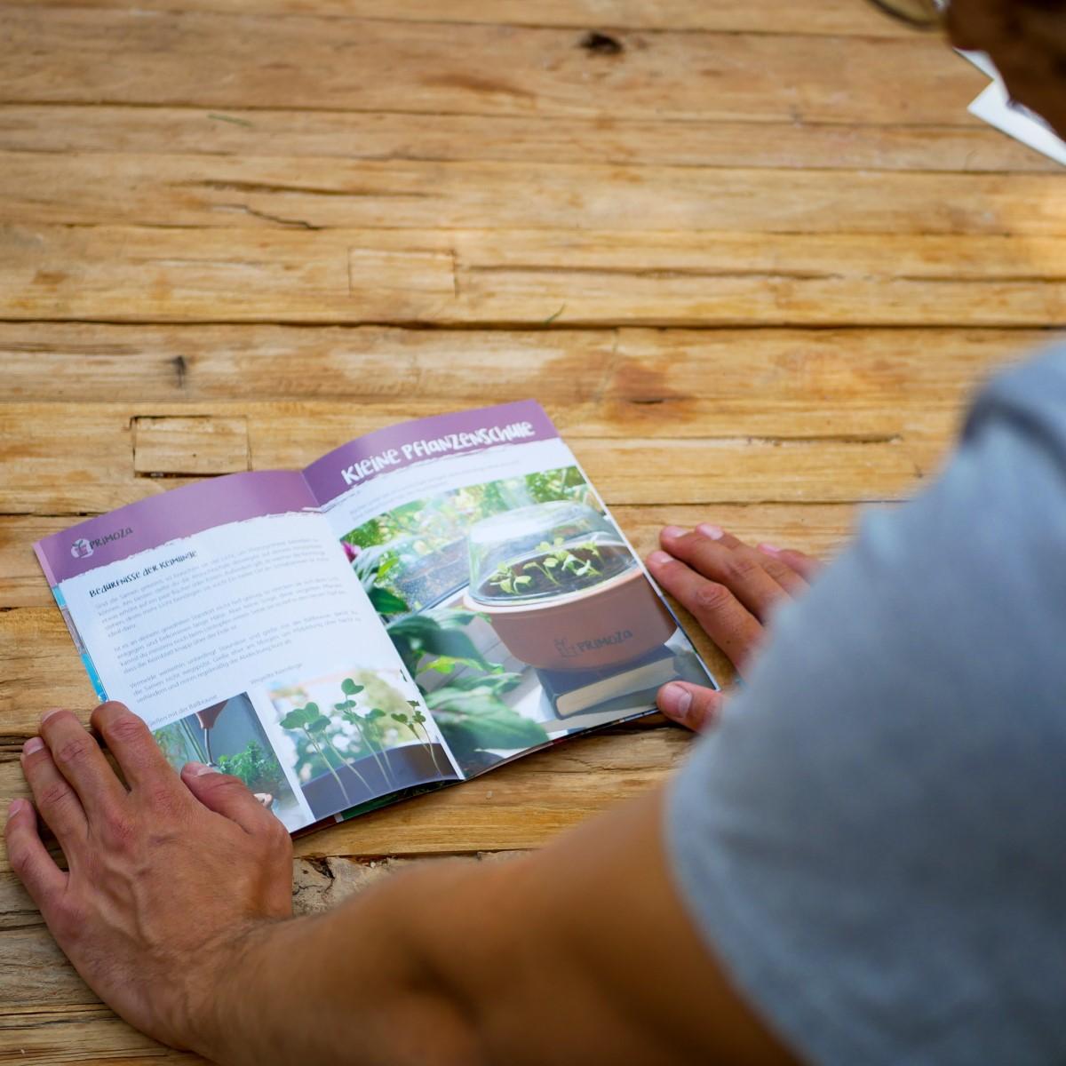 Eine Broschüre mit Einpflanz- und Anzuchttipps liegt geöffnet auf einem Holztisch. Ein Mensch liest sie gerade.