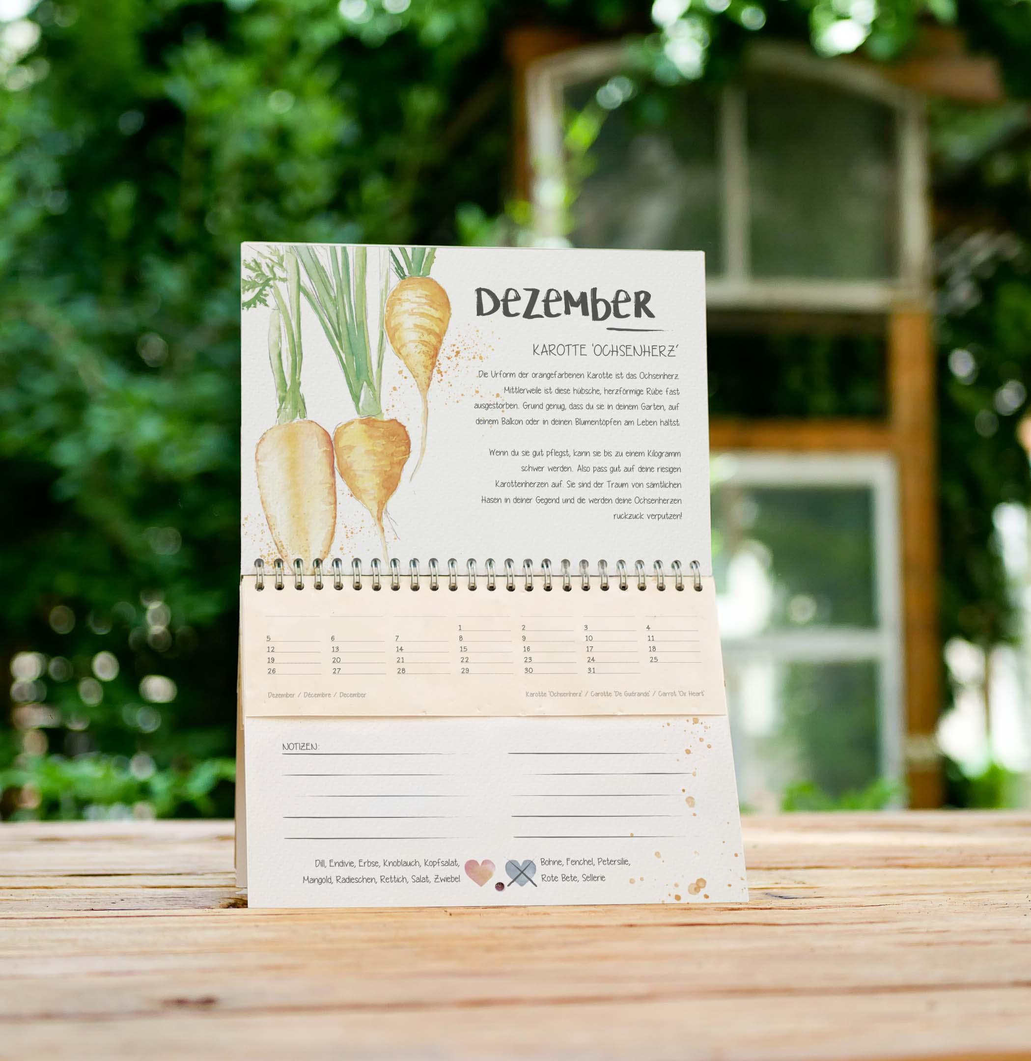 Dezember Kalenderblatt im einpflanzbaren Kalender Tausendsassa zeitlos 2022: samenfestes Bio-Saatgut