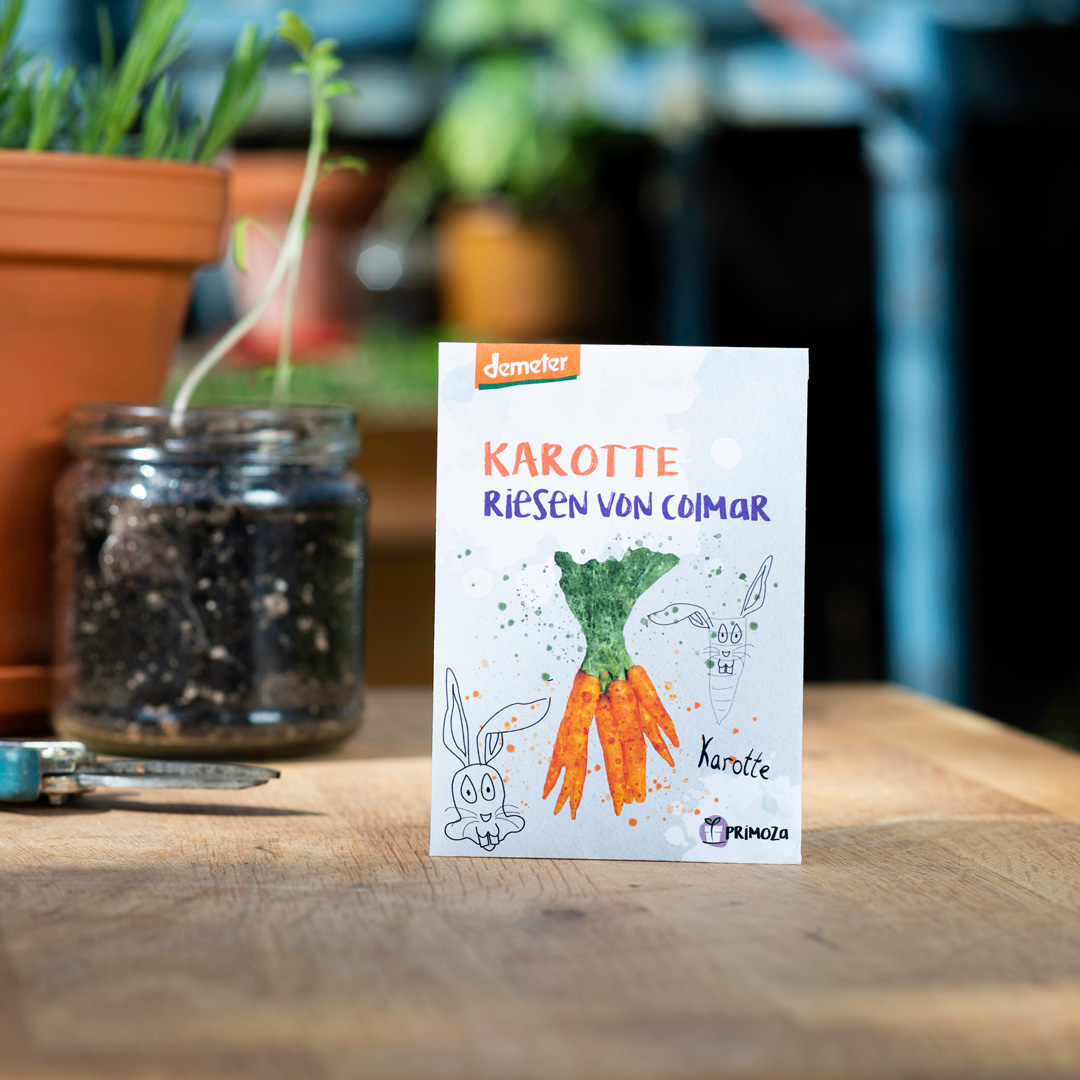 Karotte Riesen von Colmar  Saatgut