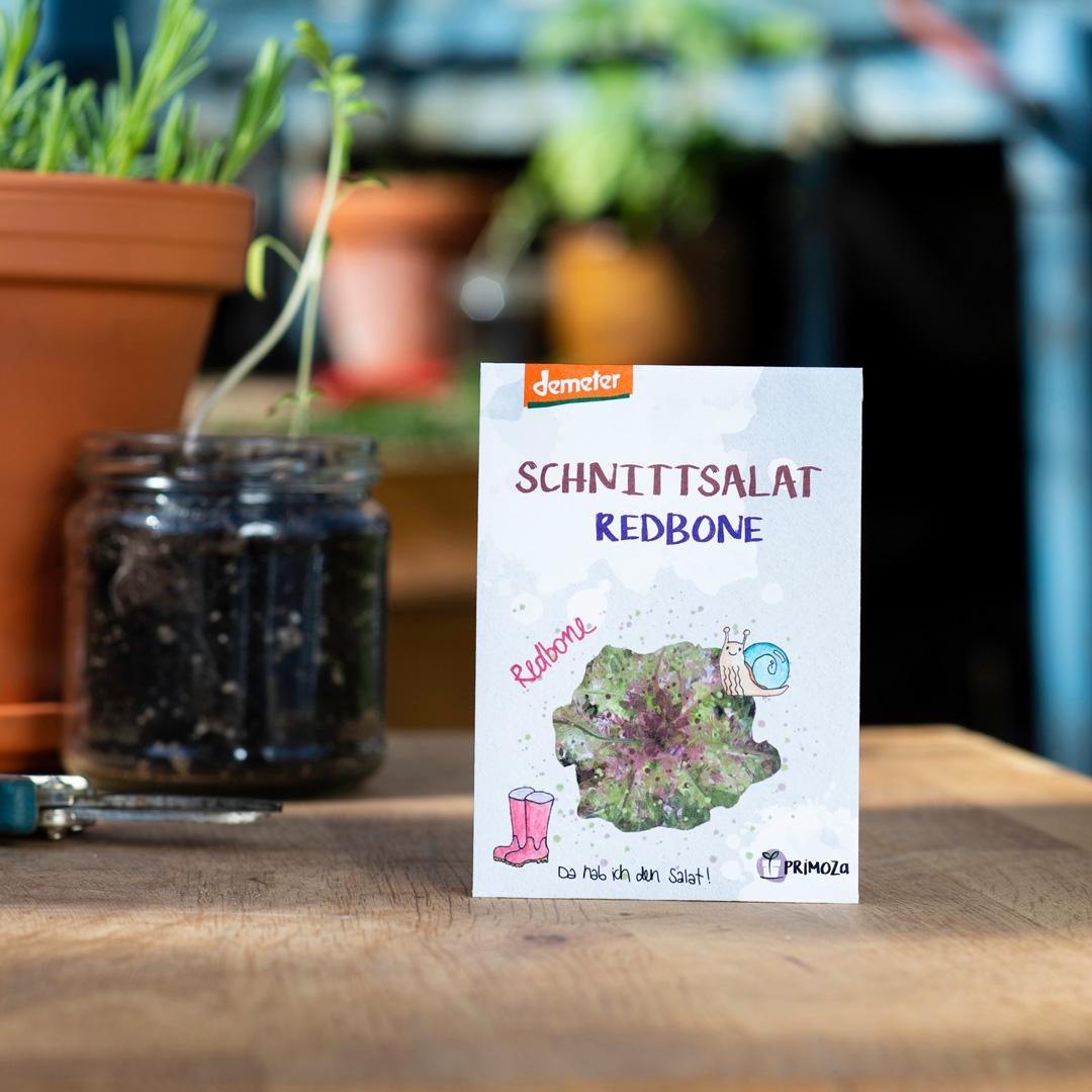 außergewöhnliches Saatgut Schnittsalat Redbone