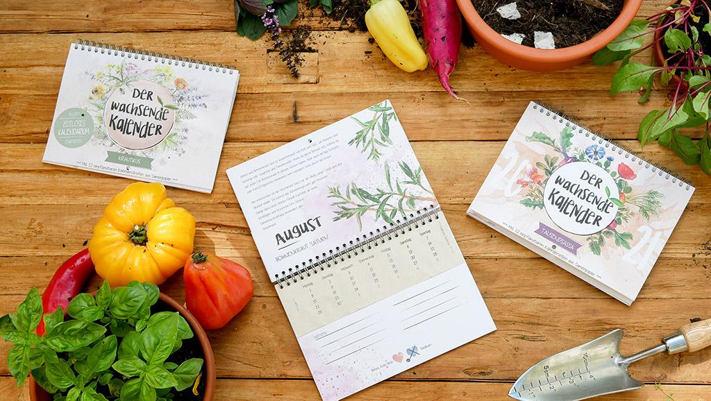 Der Wachsende Kalender Krautikus und Tausendsassa mit Kalenderblättern aus Samenpapier auf einem Holztisch mit Gemüse und Kräutern.