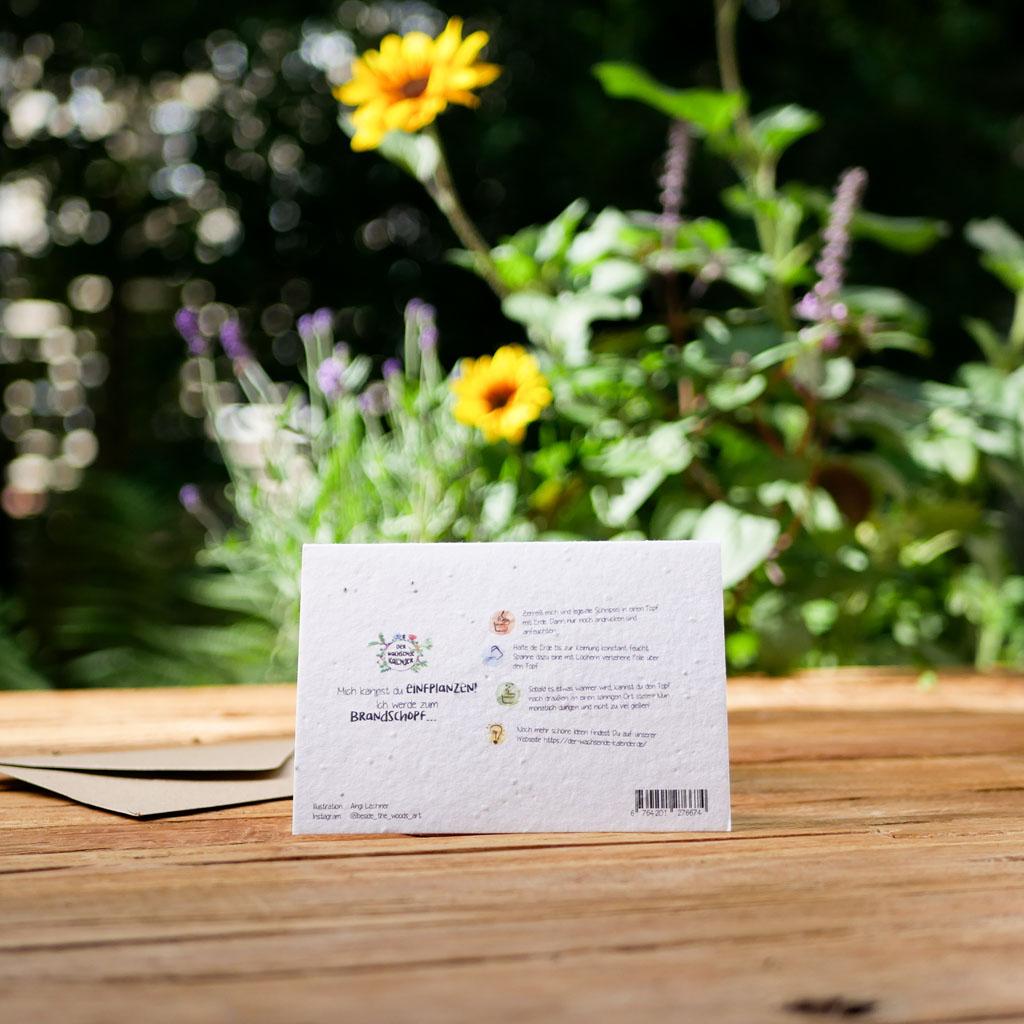 Rückseite einpflanzbare Klappkarte aus Samenpapier. Karte zur Hochzeit. Mit Umschlag aus Graspapier