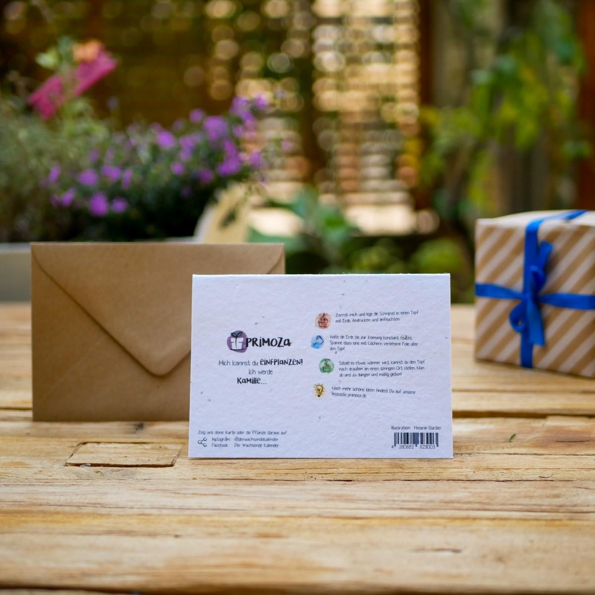 Einpflanzbare  Geburtstags Klappkarte aus Samenpapier mit fröhlichen Insekten