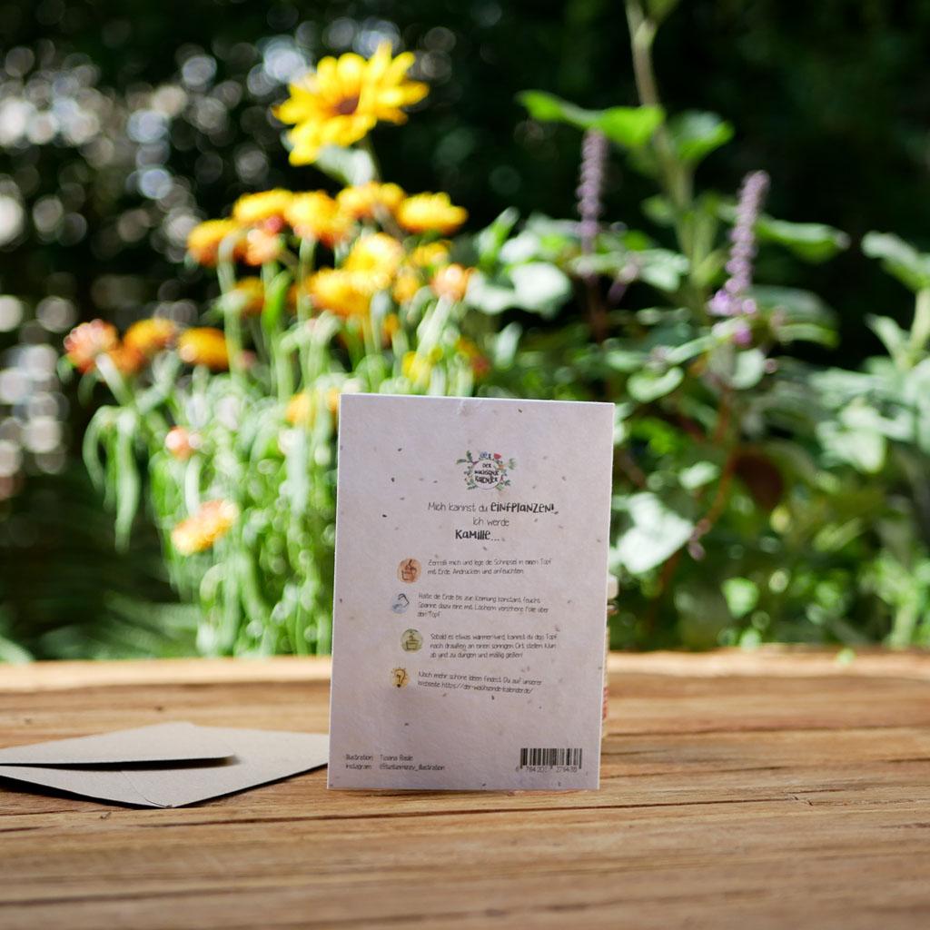 Rückseite einpflanzbare Klappkarte aus Samenpapier. Grußkarte zur Geburt. Mit Umschlag aus Graspapier