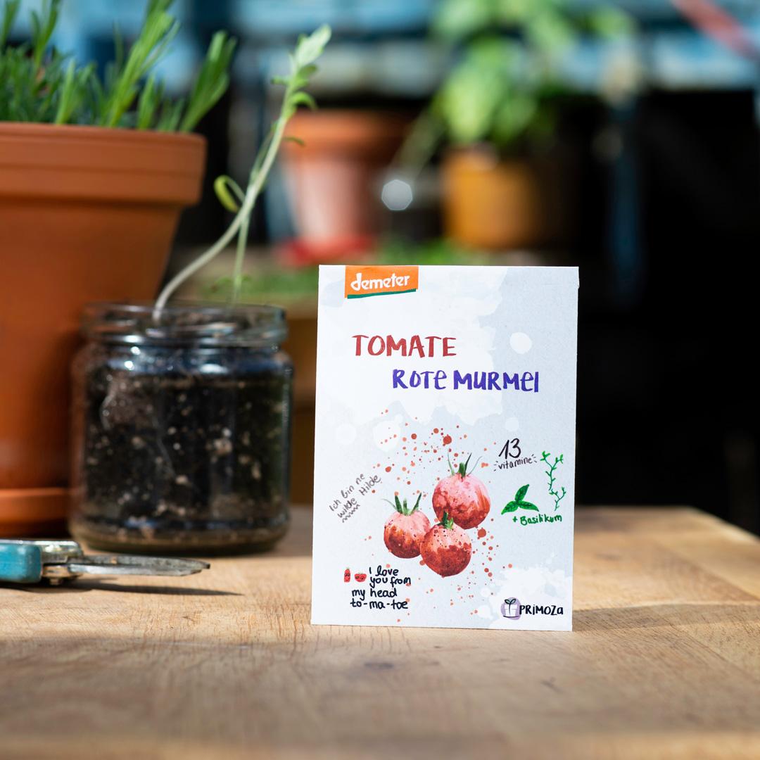 Tomatensaatgut rote Murmel