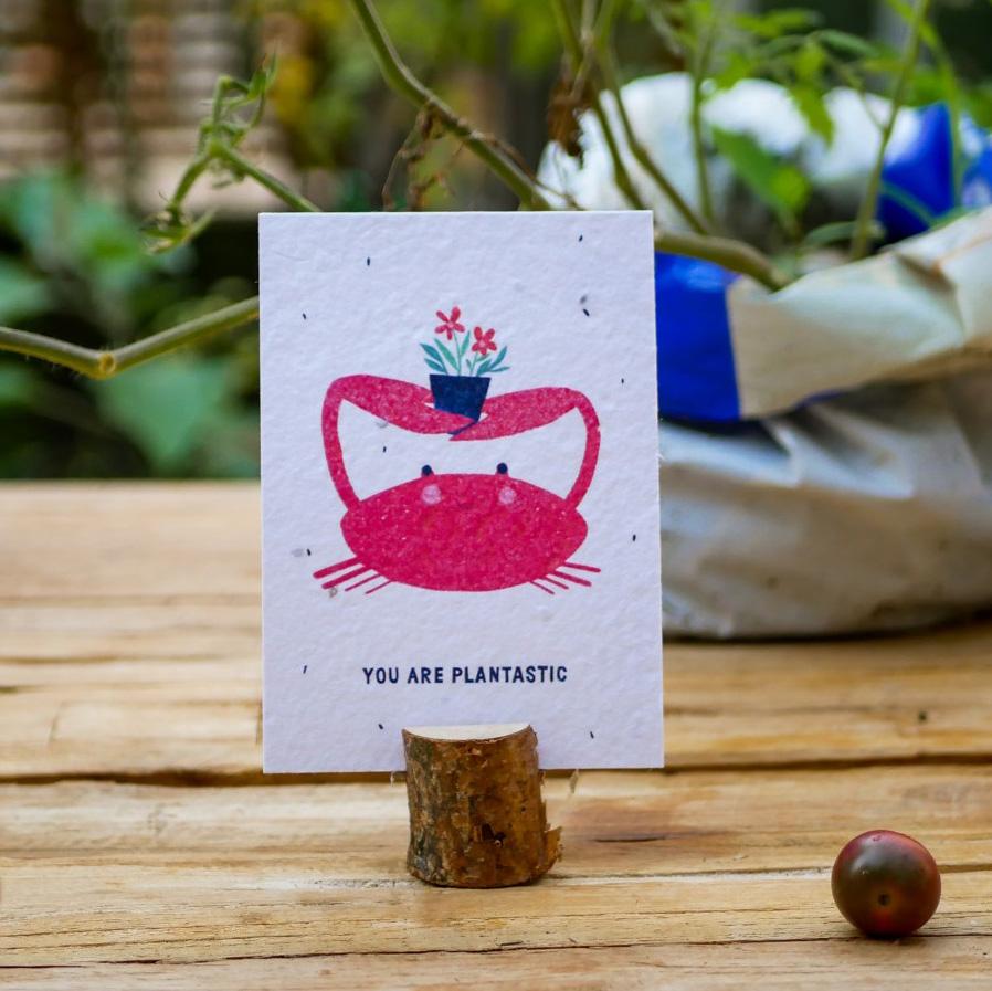 """Einpflanzbare Postkarte aus Samenpapier mit Krebs als Motiv und Spruch """"You are plantiastic"""" steht auf einem Holztisch in einem Stadtgarten."""
