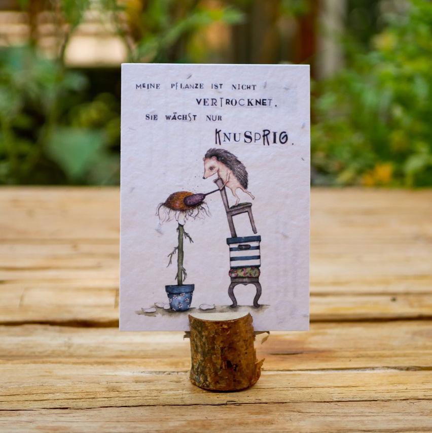 """Einpflanzbare Postkarte aus Samenpapier mit Motiv """"Meine Pflanze ist nicht vertrocknet, sie wächst nur knusprig"""" steht auf einem Holztisch in einem Stadtgarten."""