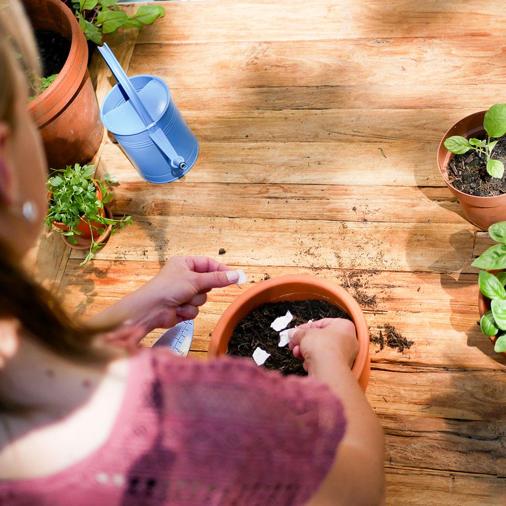 Frau pflanzt Samenpapier aus dem Wachsenden Kalender in Topf. Pflanzen und Gießkanne im Hintergrund.