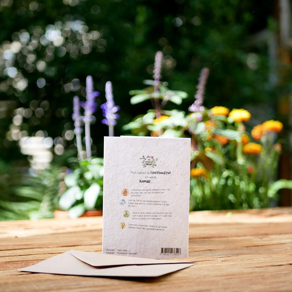 Rückseite einpflanzbare Klappkarte aus Samenpapier. Grußkarte für Geburtstag. Mit Umschlag aus Graspapier