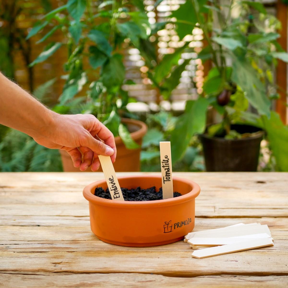 Pflanzenstecker aus Holz stecken in einer mit Erde gefüllten Anzuchtschale aus Ton.