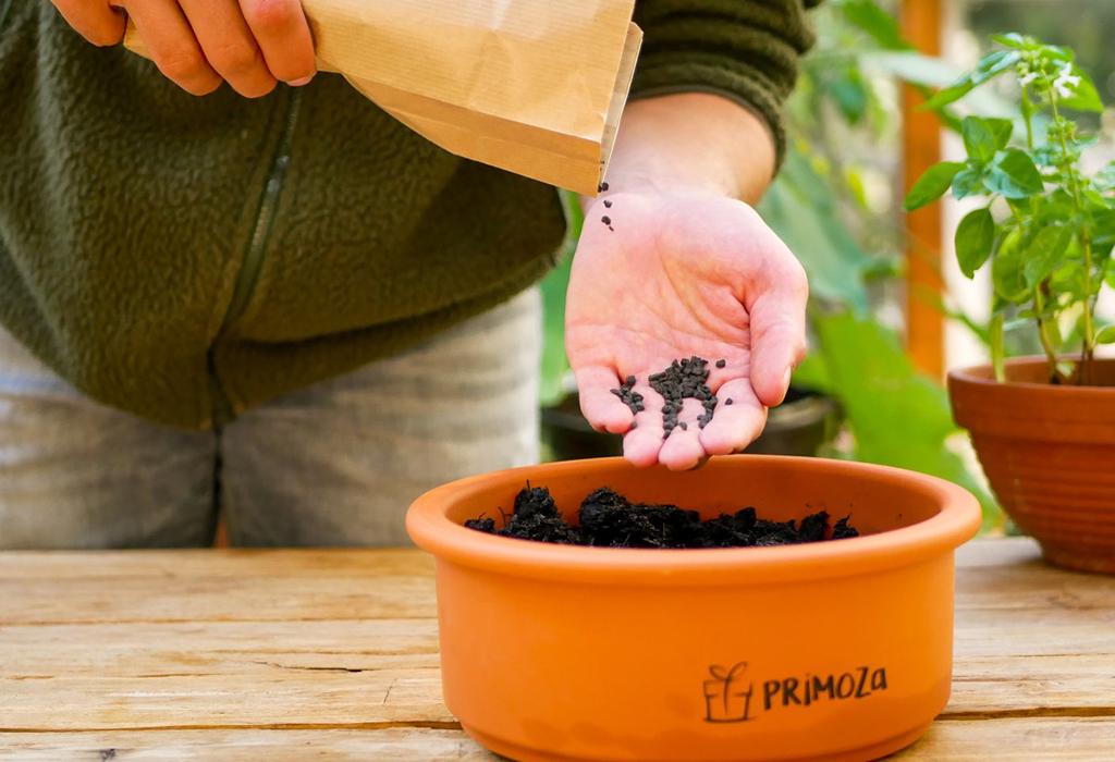 Tontopf und Dünger aus dem nachhaltigen, plastikfreien Einpflanzset von primoza