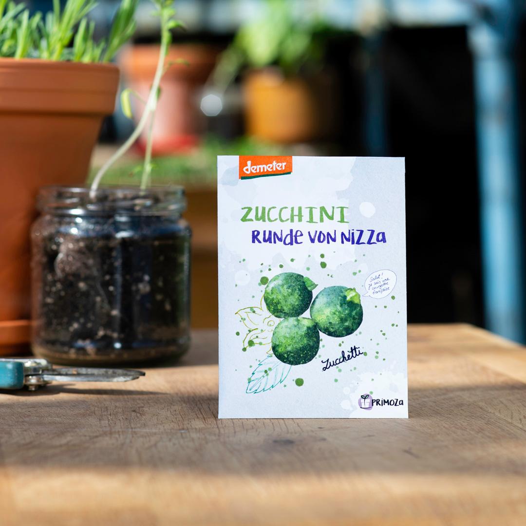 Saatgut Zucchini Runde von Nizza